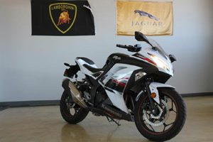 2014 Kawasaki Ninja 300 ABS Carfax Report - No Accidents  Damage Reported to CARFAX  White  A