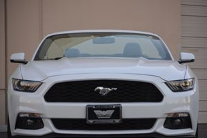 2017 Ford Mustang EcoBoost Premium Carfax 1-Owner - No AccidentsDamage Reported  White  We ar