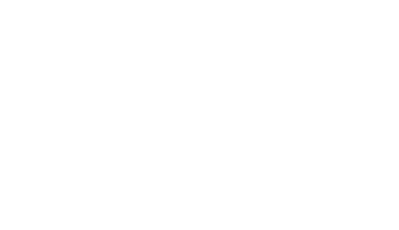 Auto Retail Group Inc.